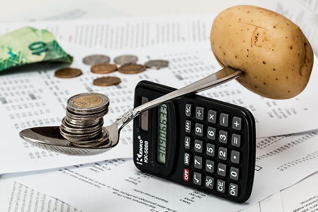 rozpočet rodiny