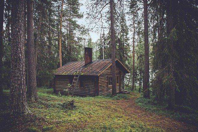 chaloupka v lese